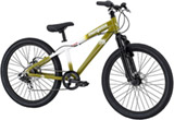 Mongoose Fireball 24''