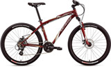 Specialized HR DISC