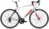 Specialized Secteur comp int