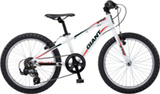 Giant XTC Jr 2 Lite 20''
