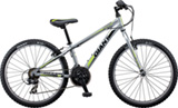 Giant XtC Jr 2 Lite 24""