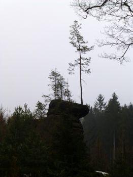 Česká Lípa - Zahrádky - Ralsko - Osečná