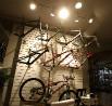 Specialized Concept Store Peksport